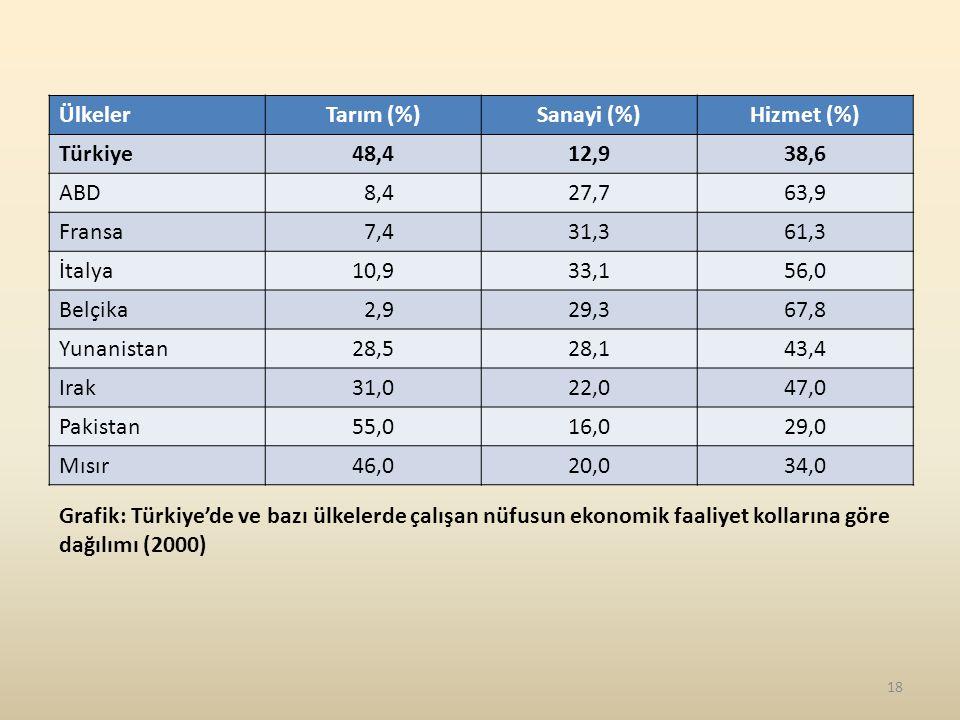Ülkeler Tarım (%) Sanayi (%) Hizmet (%) Türkiye. 48,4. 12,9. 38,6. ABD. 8,4. 27,7. 63,9. Fransa.