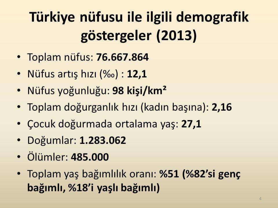 Türkiye nüfusu ile ilgili demografik göstergeler (2013)