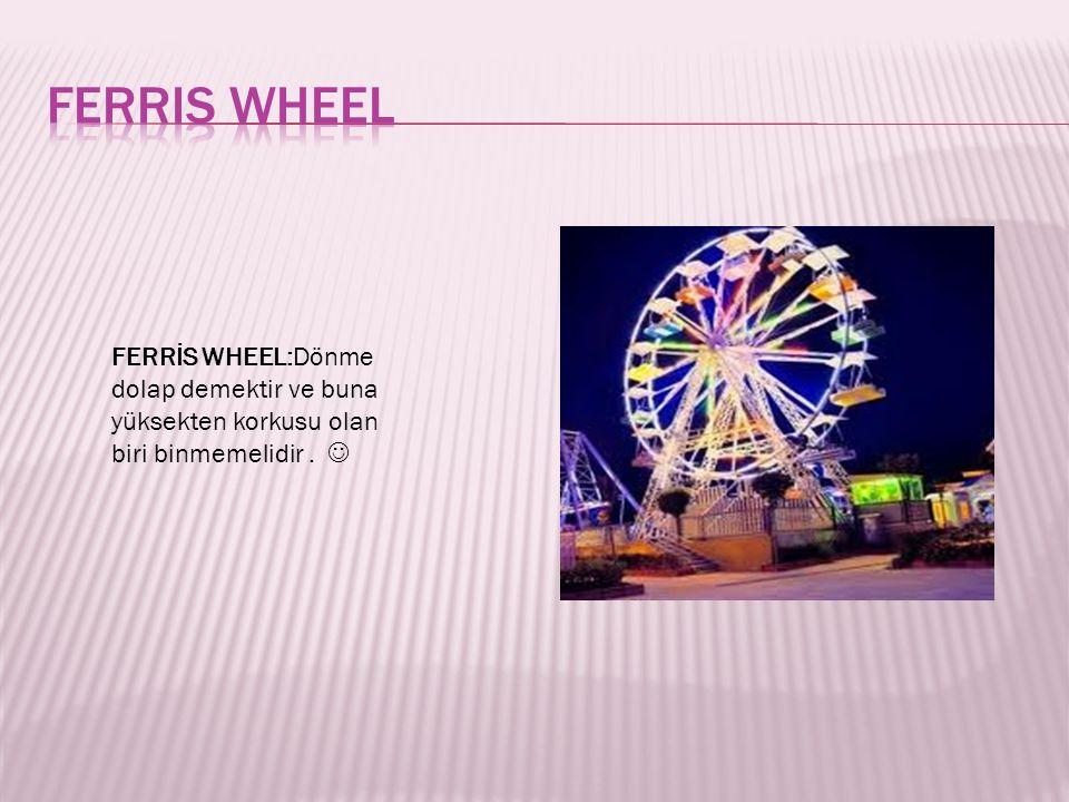 Ferris wheel FERRİS WHEEL:Dönme dolap demektir ve buna yüksekten korkusu olan biri binmemelidir .