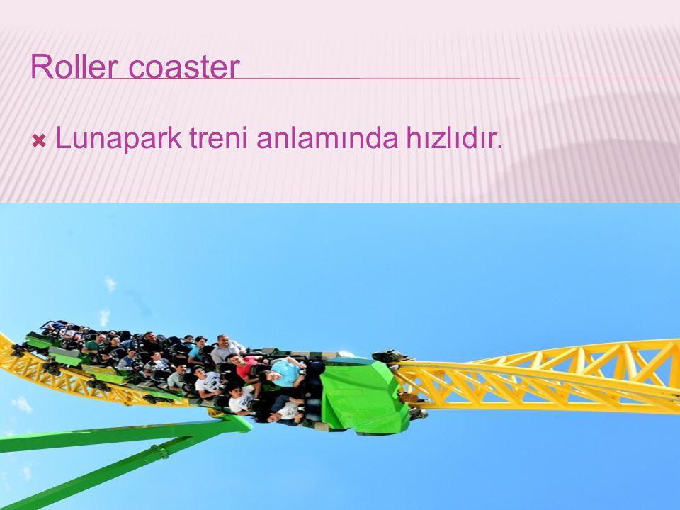 Roller coaster Lunapark treni anlamında hızlıdır.