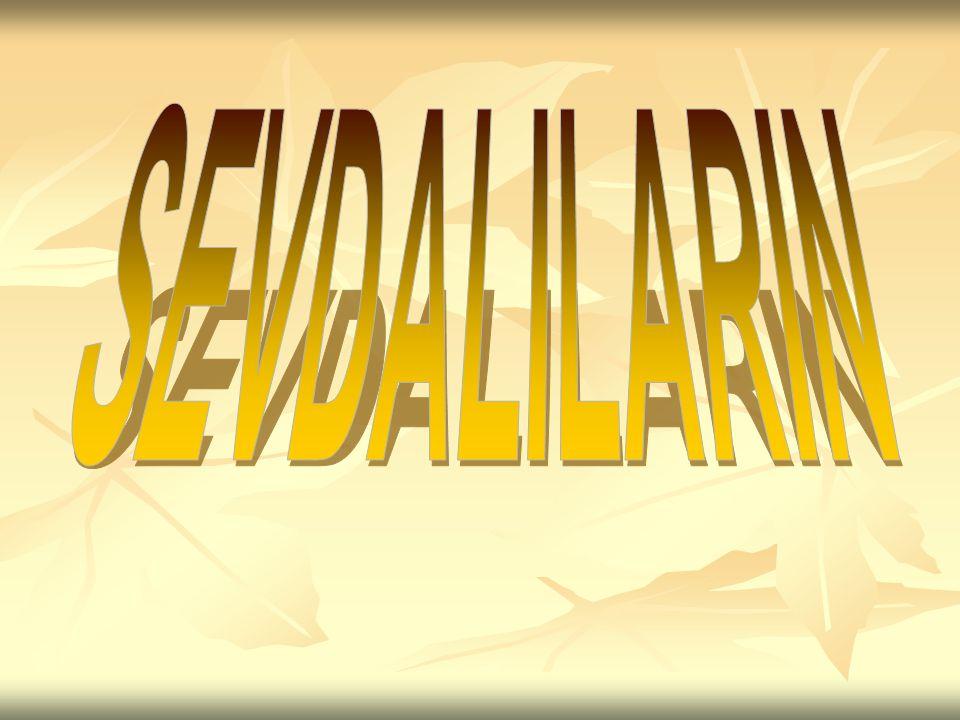 SEVDALILARIN
