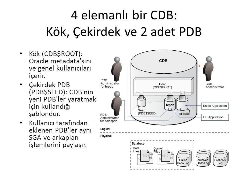 4 elemanlı bir CDB: Kök, Çekirdek ve 2 adet PDB