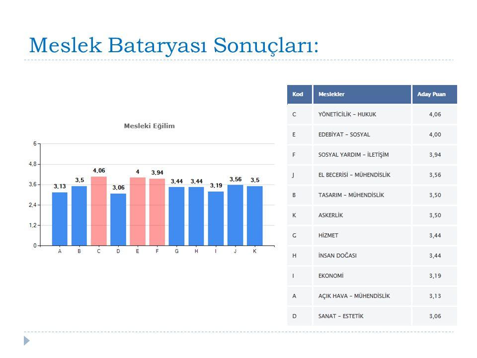 Meslek Bataryası Sonuçları: