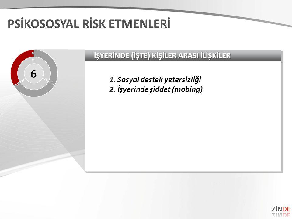 PSİKOSOSYAL RİSK ETMENLERİ