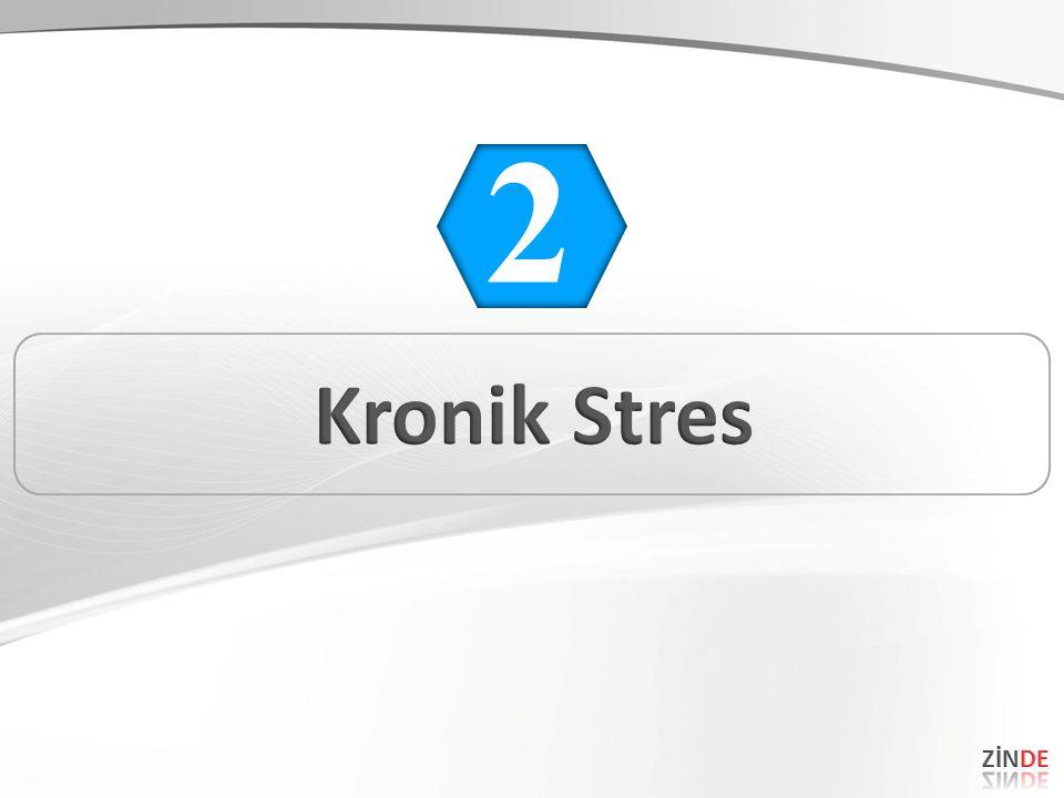 2 Kronik Stres ZİNDE 31 31