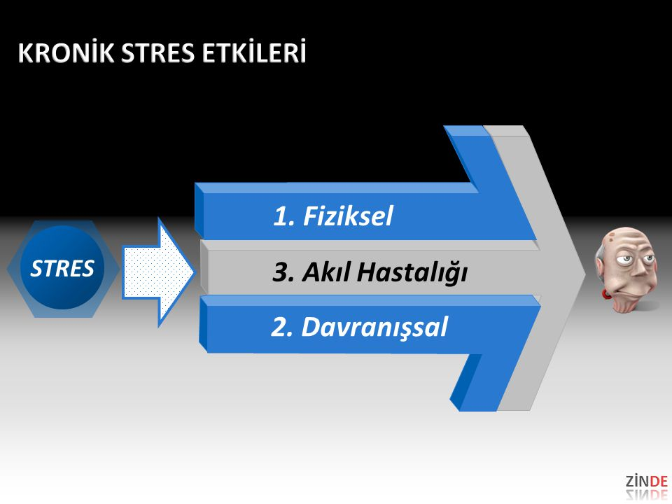 KRONİK STRES ETKİLERİ 1. Fiziksel 3. Akıl Hastalığı 2. Davranışsal