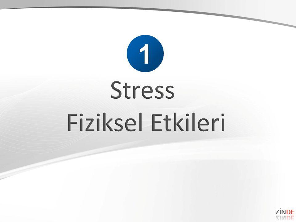 1 Stress Fiziksel Etkileri ZİNDE 35 35