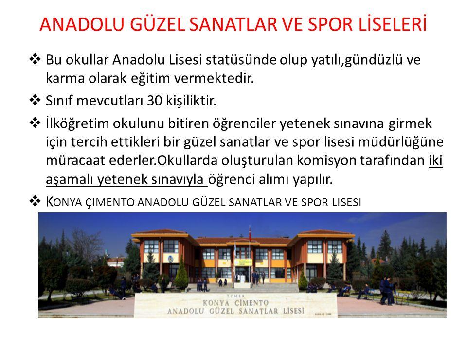 ANADOLU GÜZEL SANATLAR VE SPOR LİSELERİ