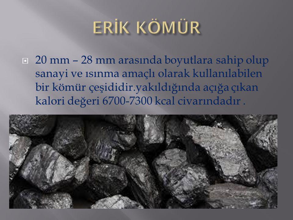 ERİK KÖMÜR