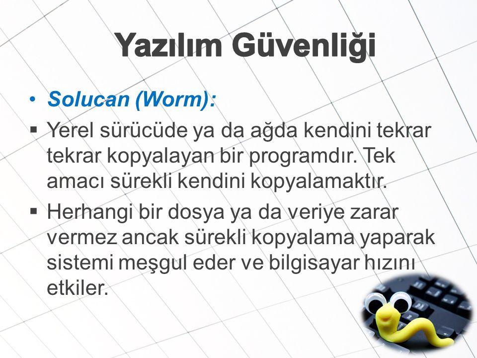 Yazılım Güvenliği Solucan (Worm):