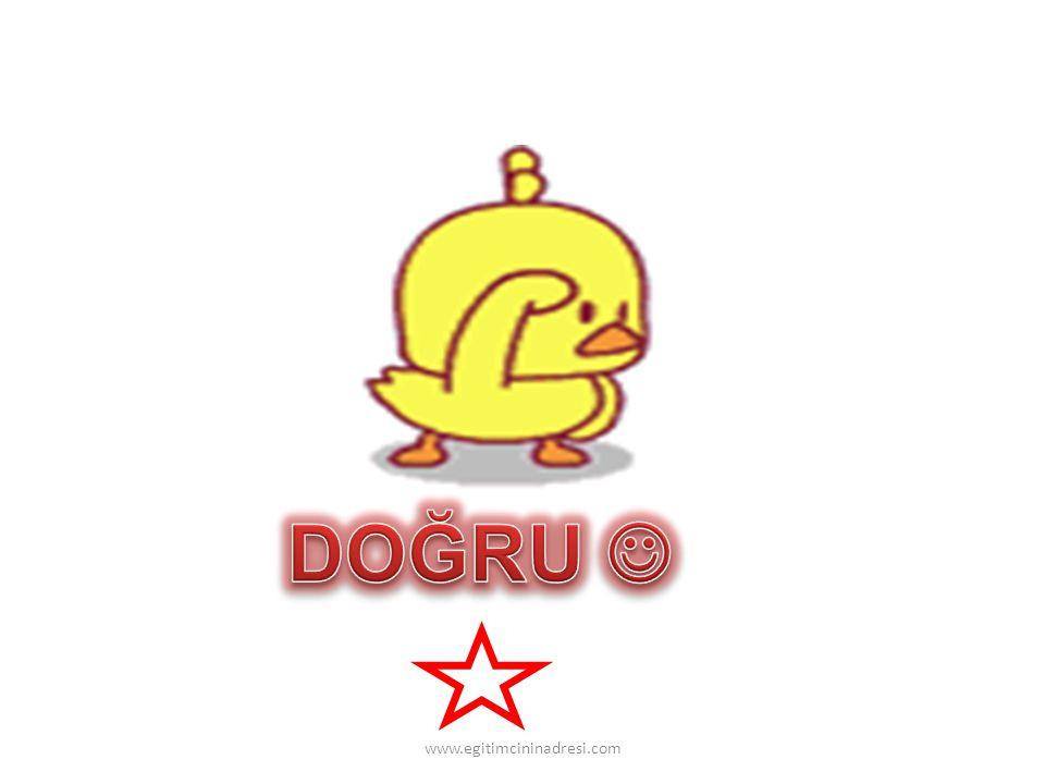 DOĞRU  www.egitimcininadresi.com