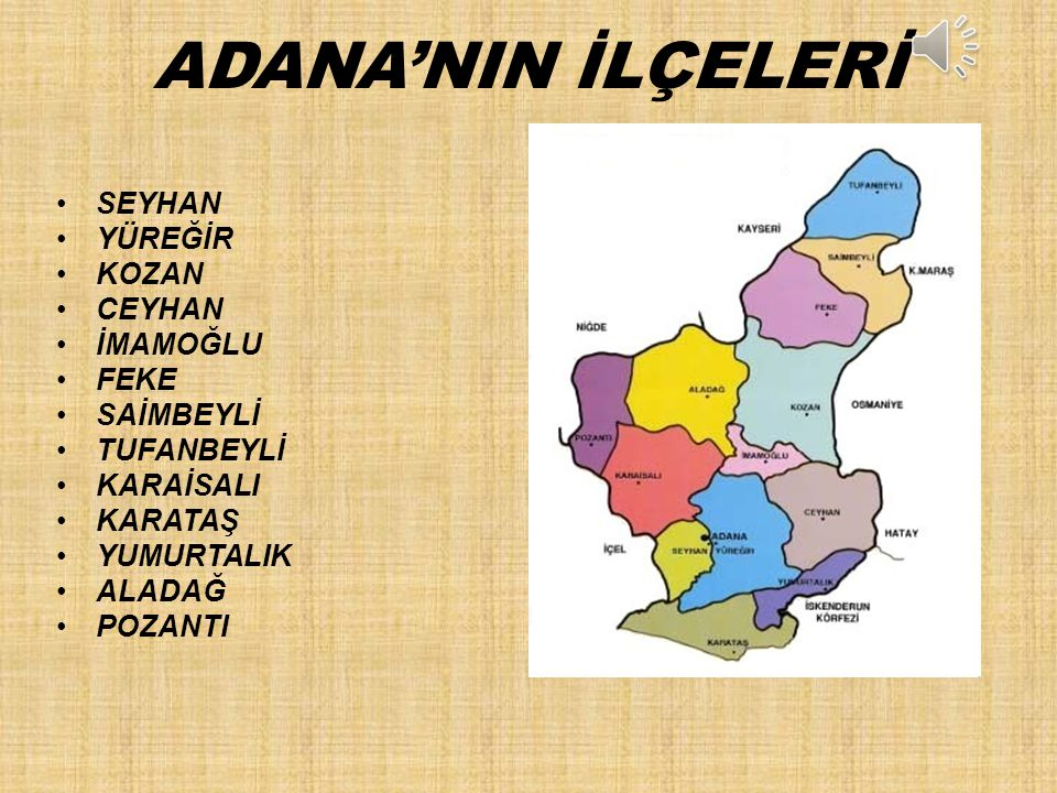 ADANA'NIN İLÇELERİ SEYHAN YÜREĞİR KOZAN CEYHAN İMAMOĞLU FEKE SAİMBEYLİ