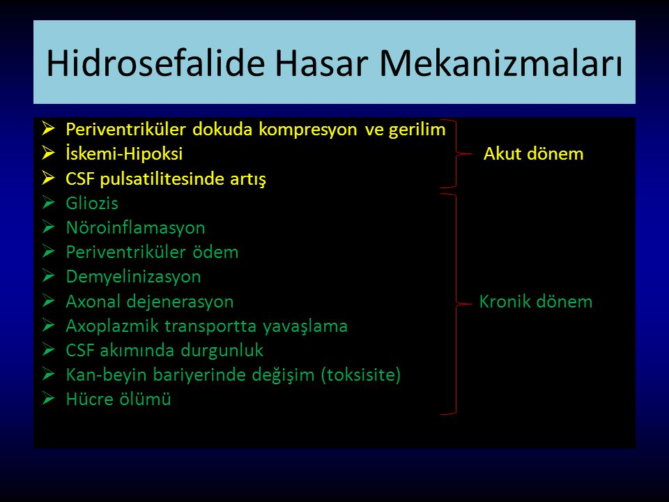 Hidrosefalide Hasar Mekanizmaları