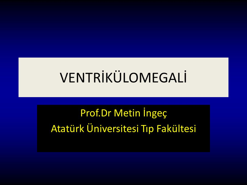 Prof.Dr Metin İngeç Atatürk Üniversitesi Tıp Fakültesi