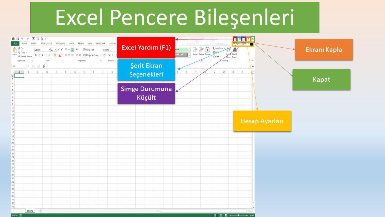 Excel Pencere Bileşenleri