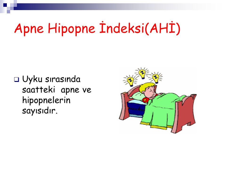 Apne Hipopne İndeksi(AHİ)