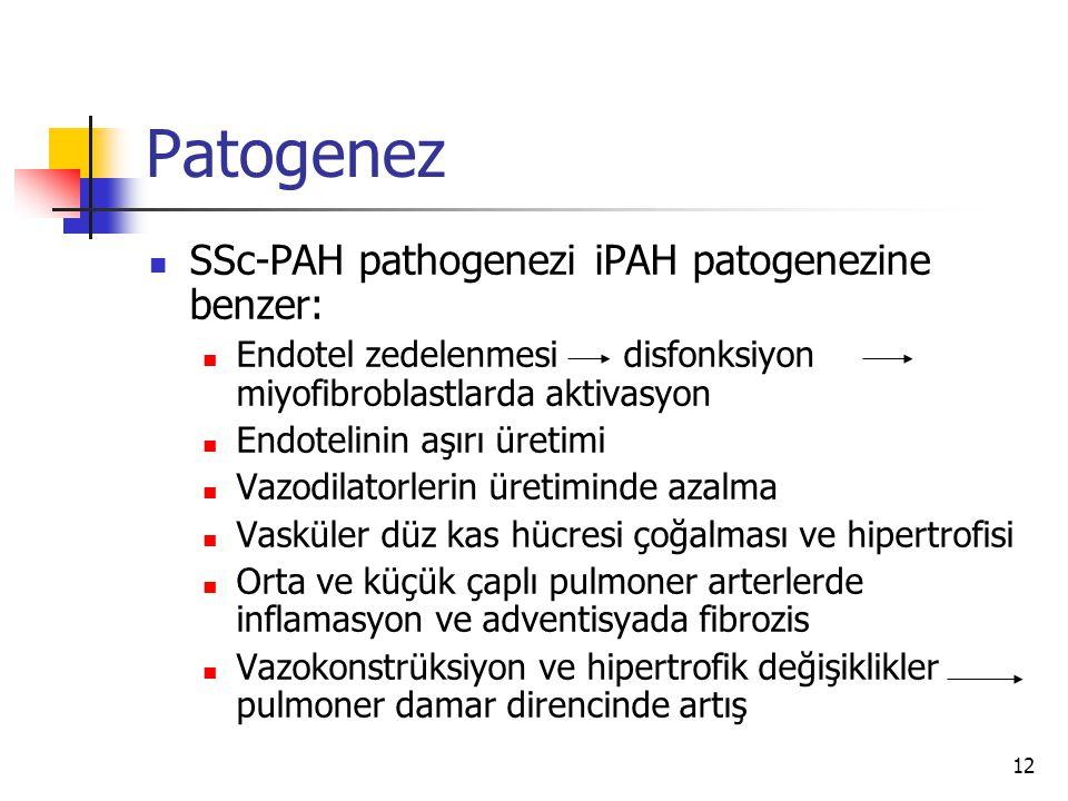 Patogenez SSc-PAH pathogenezi iPAH patogenezine benzer:
