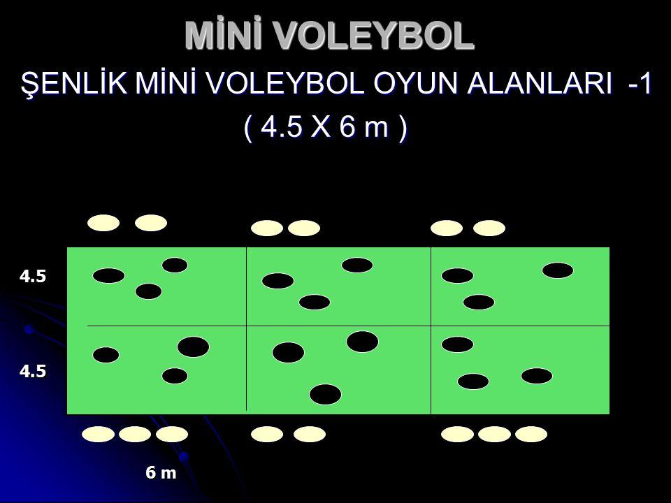 MİNİ VOLEYBOL ŞENLİK MİNİ VOLEYBOL OYUN ALANLARI -1 ( 4.5 X 6 m ) 4.5