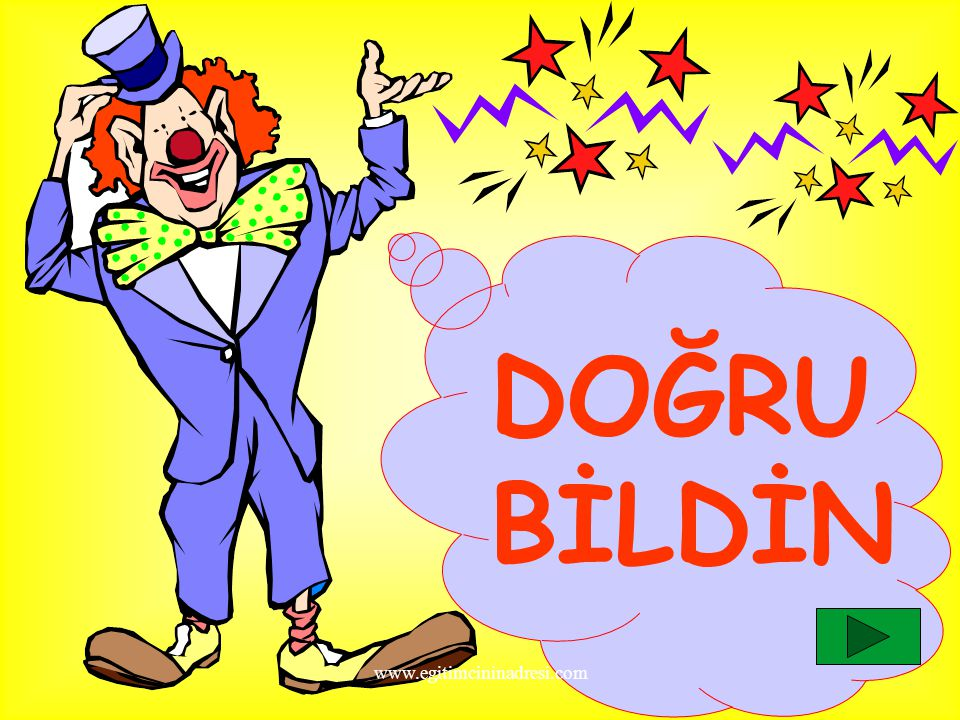 DOĞRU BİLDİN www.egitimcininadresi.com