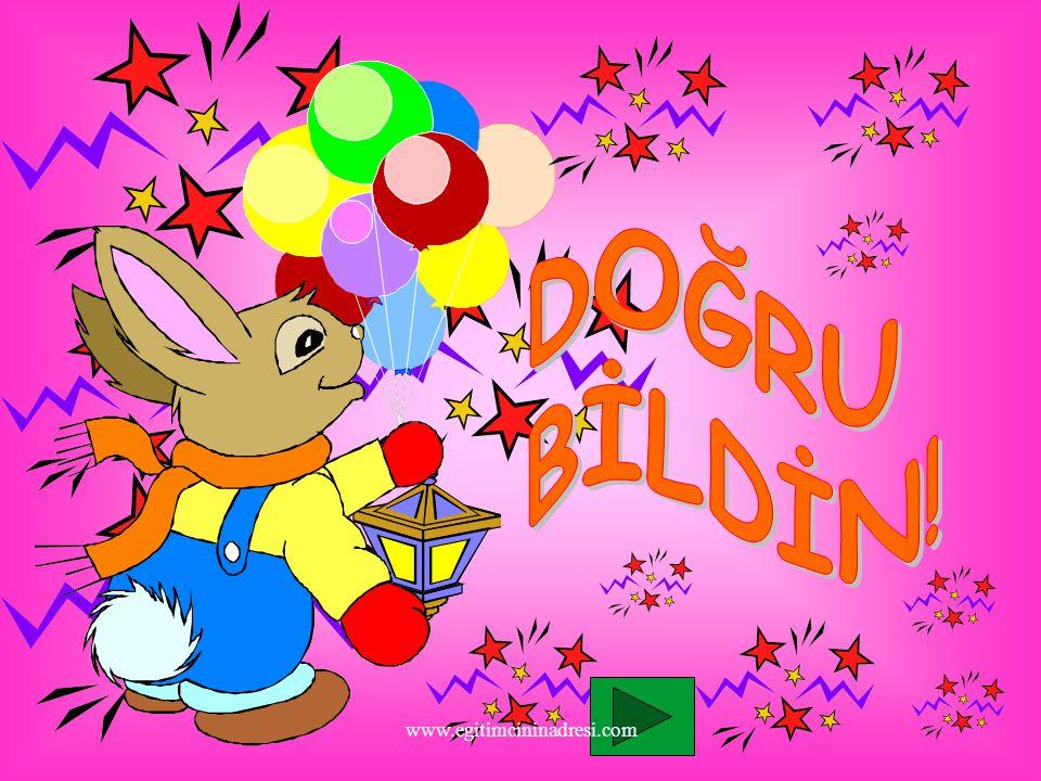DOĞRU BİLDİN! www.egitimcininadresi.com