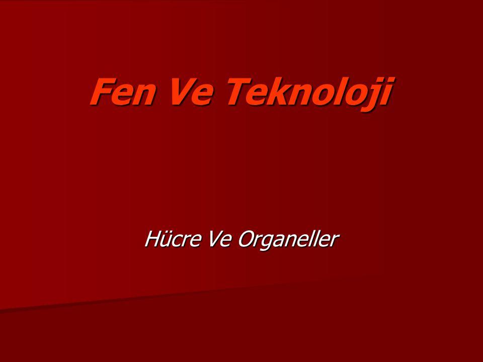 Fen Ve Teknoloji Hücre Ve Organeller