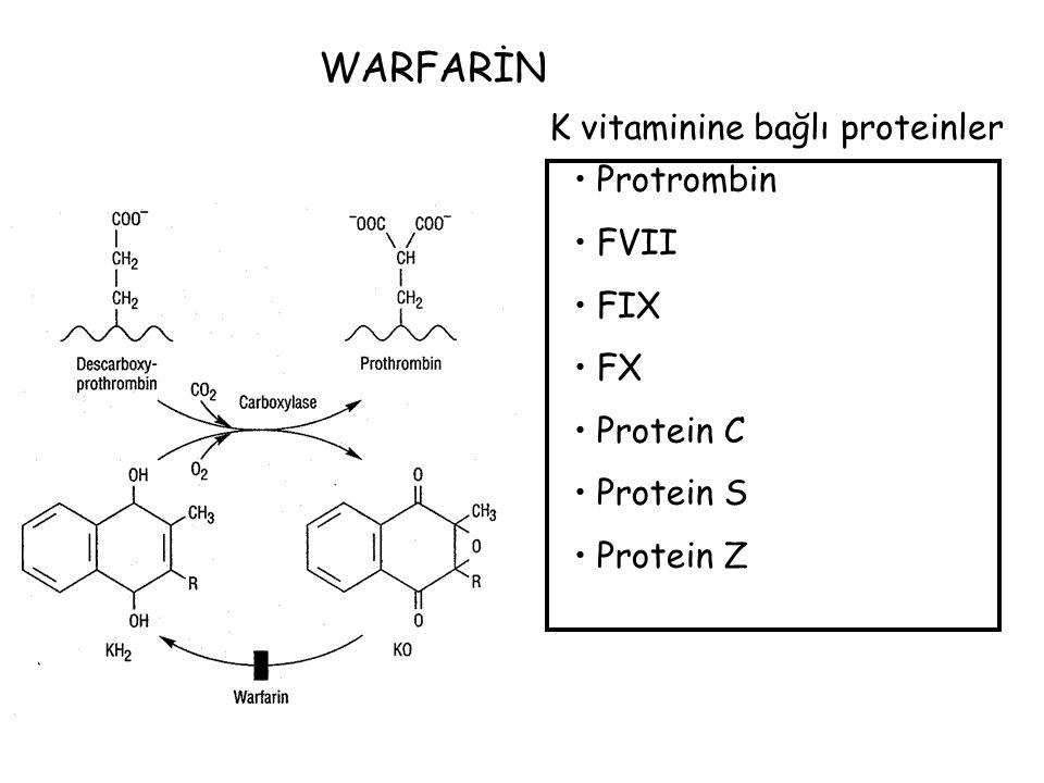 WARFARİN K vitaminine bağlı proteinler Protrombin FVII FIX FX