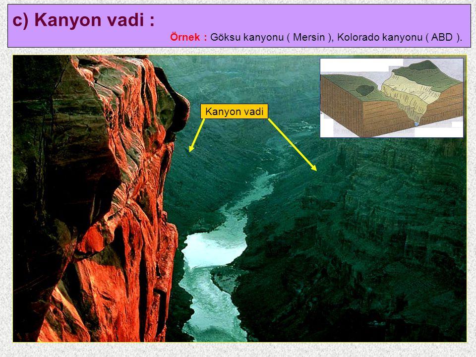 c) Kanyon vadi : Örnek : Göksu kanyonu ( Mersin ), Kolorado kanyonu ( ABD ). Kanyon vadi