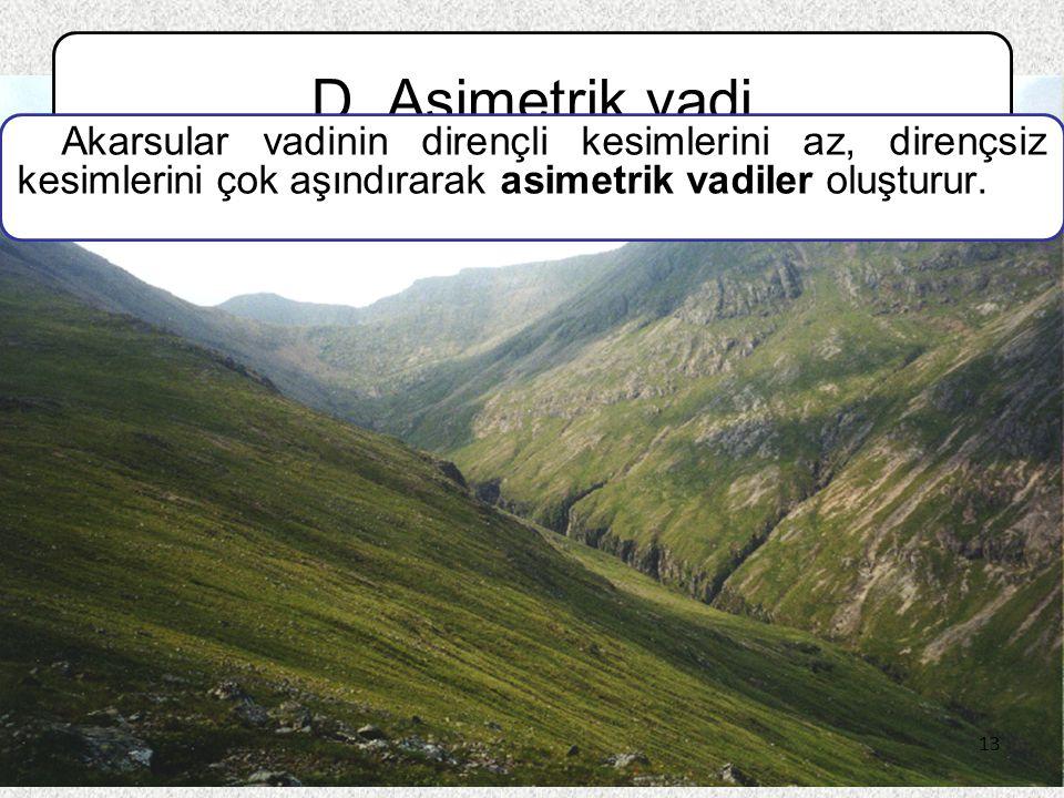D. Asimetrik vadi Akarsular vadinin dirençli kesimlerini az, dirençsiz kesimlerini çok aşındırarak asimetrik vadiler oluşturur.