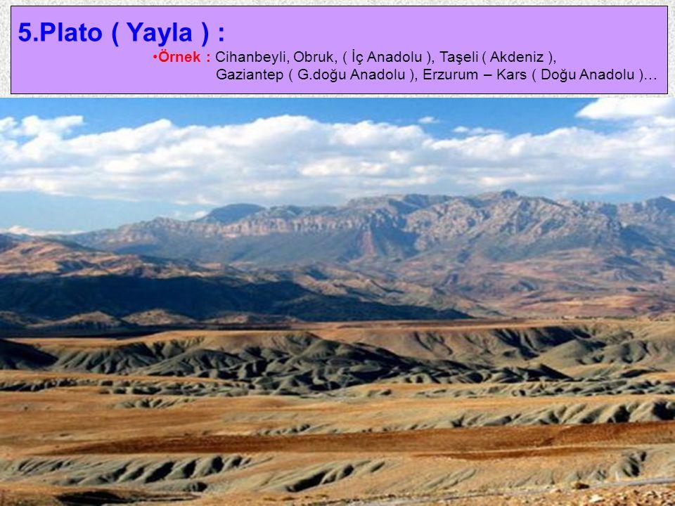 5.Plato ( Yayla ) : Örnek : Cihanbeyli, Obruk, ( İç Anadolu ), Taşeli ( Akdeniz ), Gaziantep ( G.doğu Anadolu ), Erzurum – Kars ( Doğu Anadolu )…