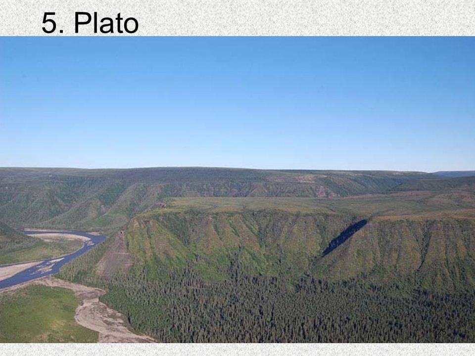 5. Plato 25