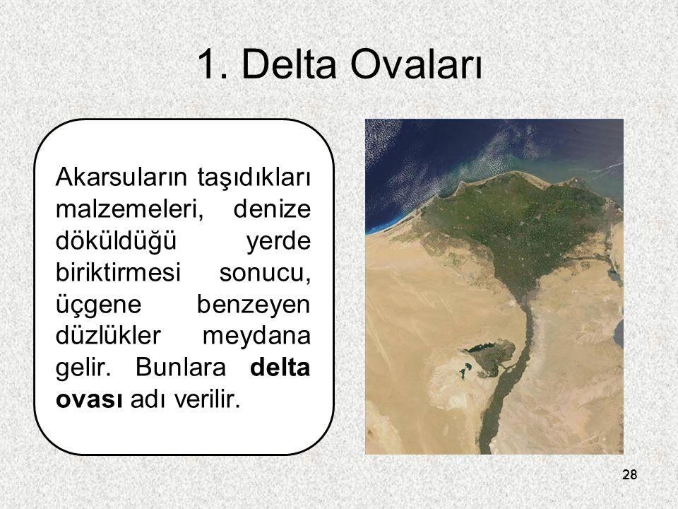 1. Delta Ovaları
