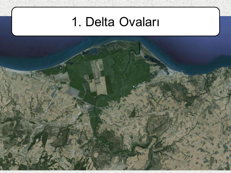 1. Delta Ovaları 29