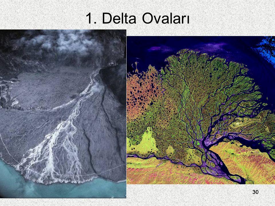 1. Delta Ovaları 30