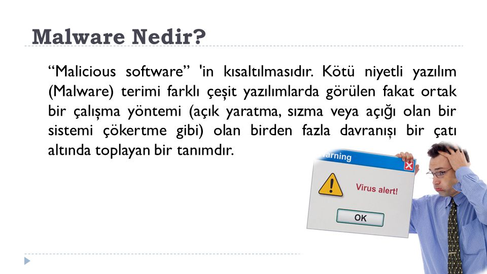 Malware Nedir