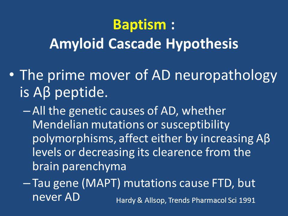 Baptism : Amyloid Cascade Hypothesis