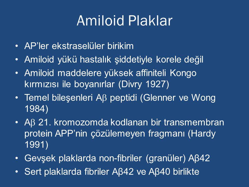 Amiloid Plaklar AP'ler ekstraselüler birikim