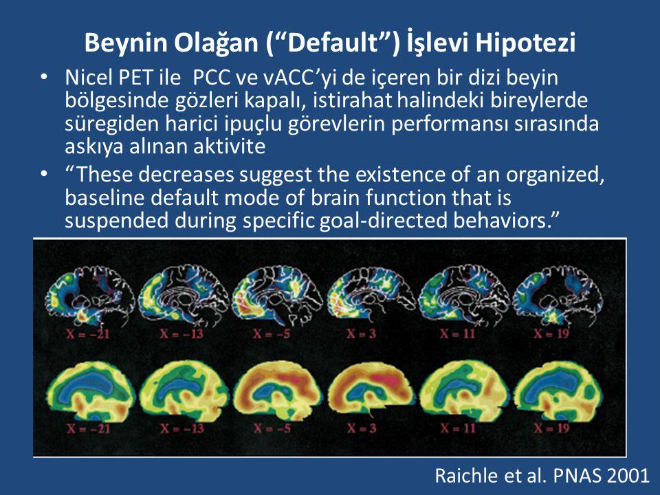Beynin Olağan ( Default ) İşlevi Hipotezi