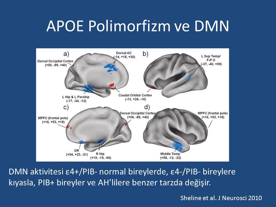 APOE Polimorfizm ve DMN