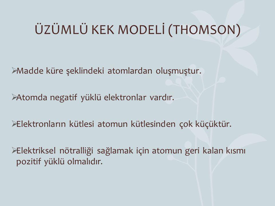 ÜZÜMLÜ KEK MODELİ (THOMSON)