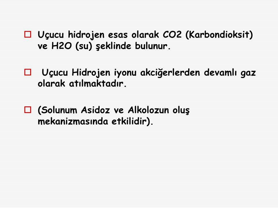 Uçucu hidrojen esas olarak CO2 (Karbondioksit) ve H2O (su) şeklinde bulunur.