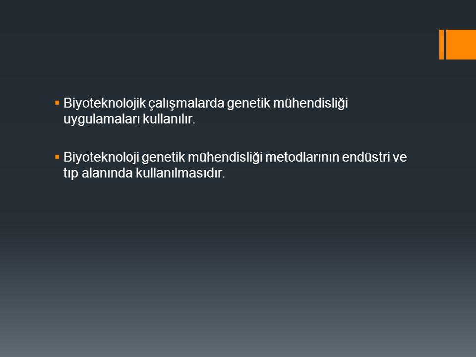 Biyoteknolojik çalışmalarda genetik mühendisliği uygulamaları kullanılır.