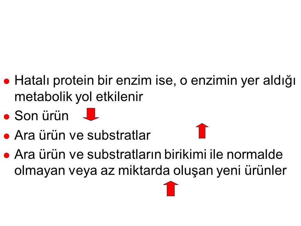 Hatalı protein bir enzim ise, o enzimin yer aldığı metabolik yol etkilenir