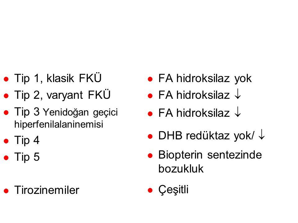 Hiperfenilalaninemiler ve FKU