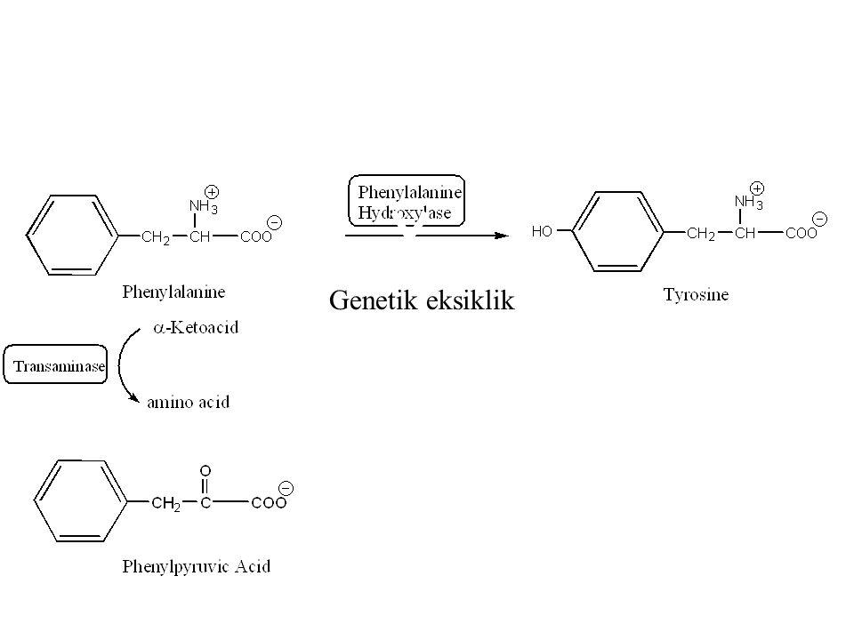 Hastalık adını bir fenilketon olan fenilpiruvattan alır