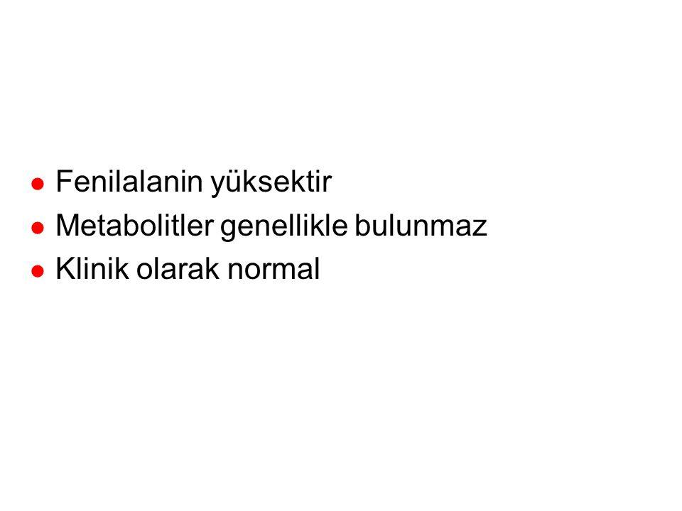 Tip 3 Yenidoğan geçici hiperfenilalaninemisi