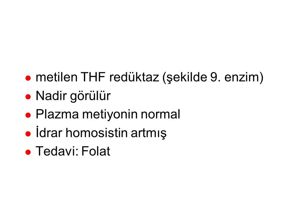 metilen THF redüktaz (homosistinüri tip 2)