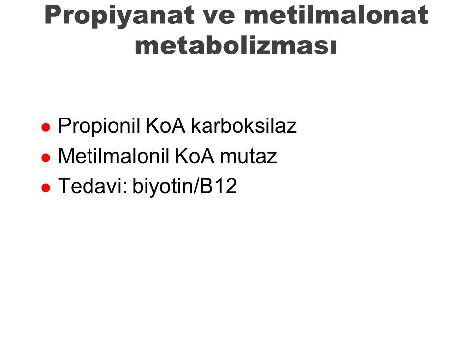 Propiyanat ve metilmalonat metabolizması