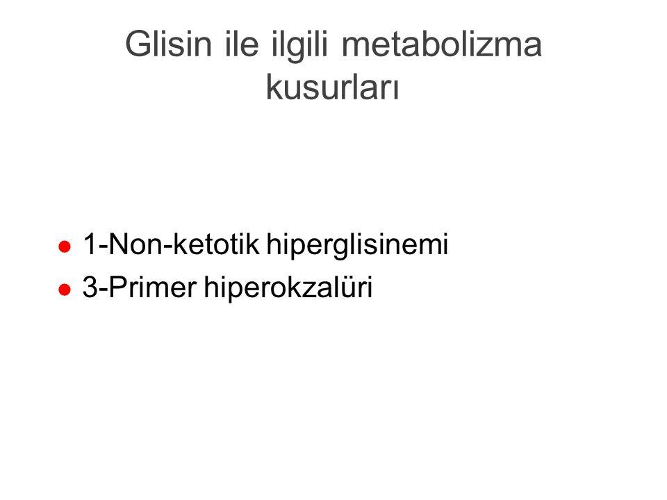 Glisin ile ilgili metabolizma kusurları