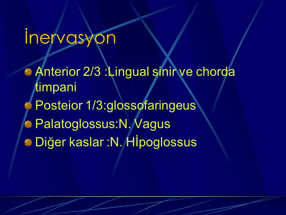 İnervasyon Anterior 2/3 :Lingual sinir ve chorda timpani