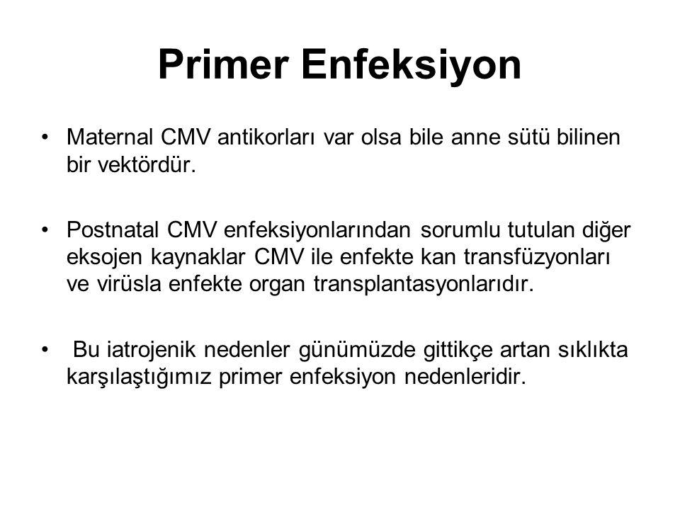 Primer Enfeksiyon Maternal CMV antikorları var olsa bile anne sütü bilinen bir vektördür.